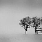 Minimal (14) by StefaniaC