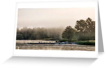 Moody mist by LadyFi
