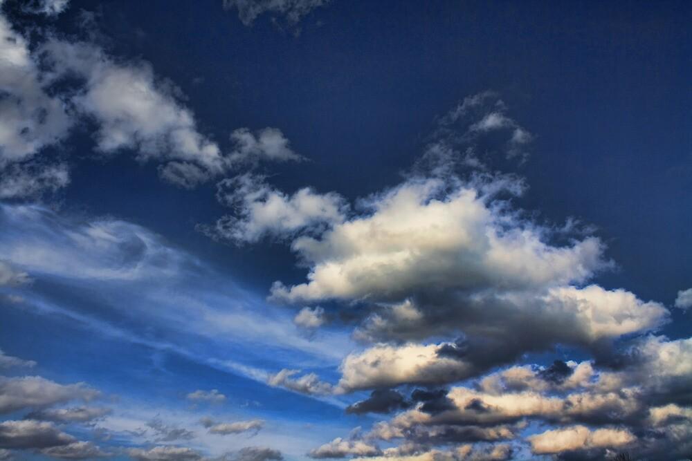 Cloud 20120131-21 by Carolyn  Fletcher