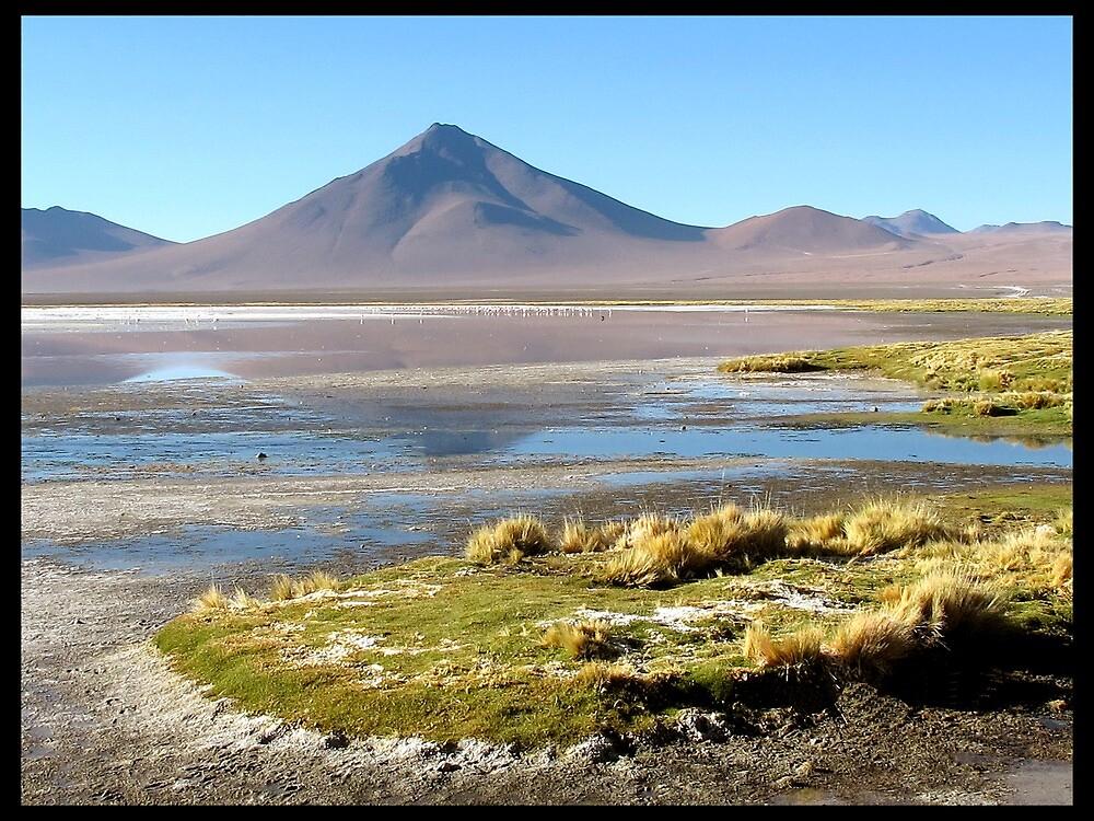 Laguna Colorada by Franlechuga