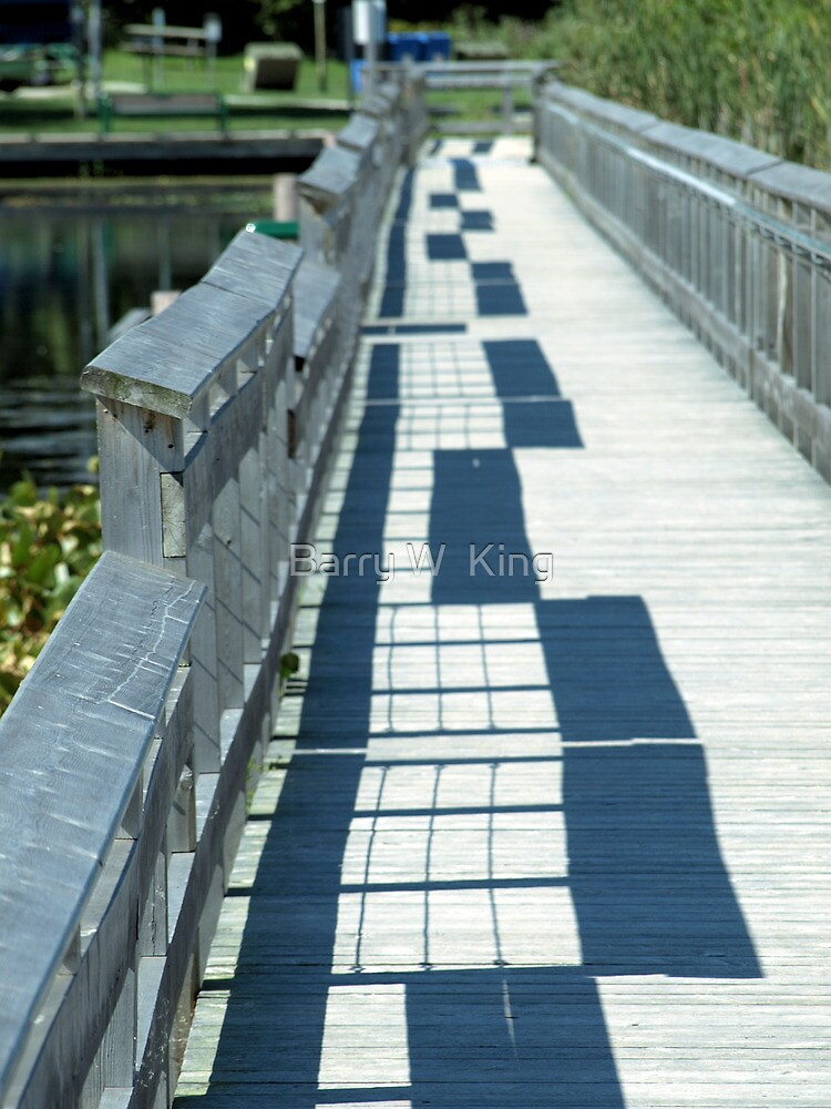 Railings And Shadows by Barry W  King