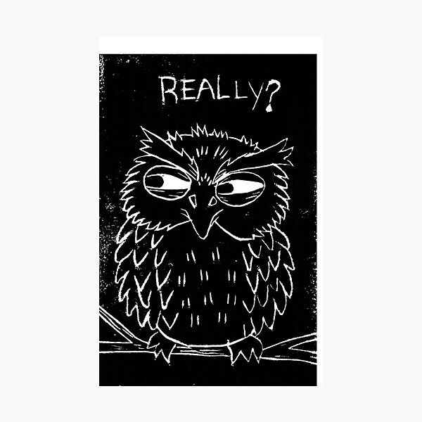 Really? (Judging Owl) Photographic Print