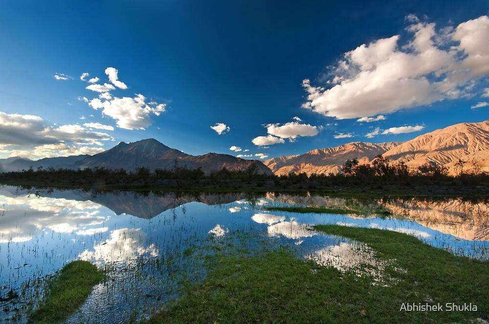 Reflections in Water by Abhishek Shukla