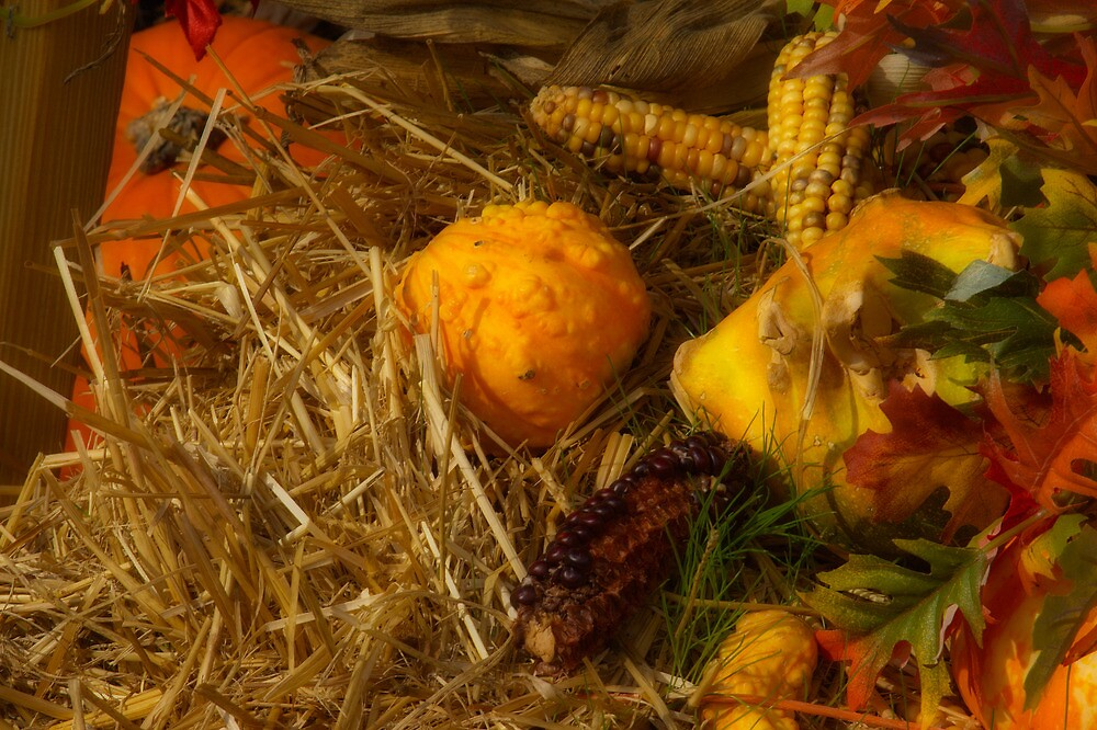 Halloween 2 by sherryk
