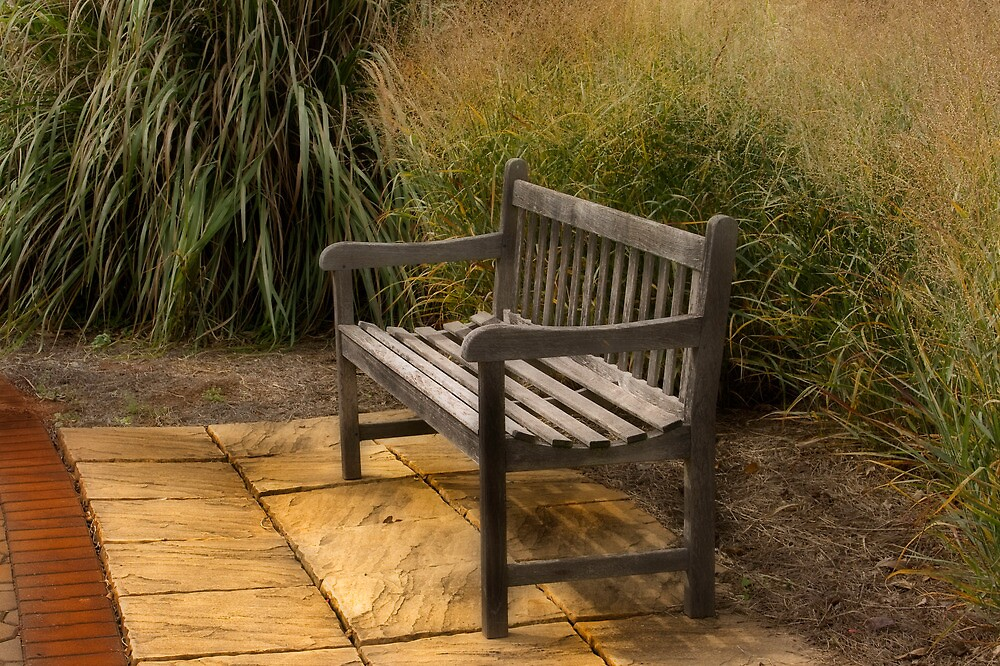 The Bench by sherryk