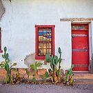 Cactus with red door and windows by Matt Suess