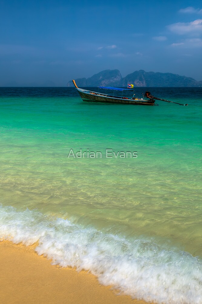Tropical Paradise by Adrian Evans