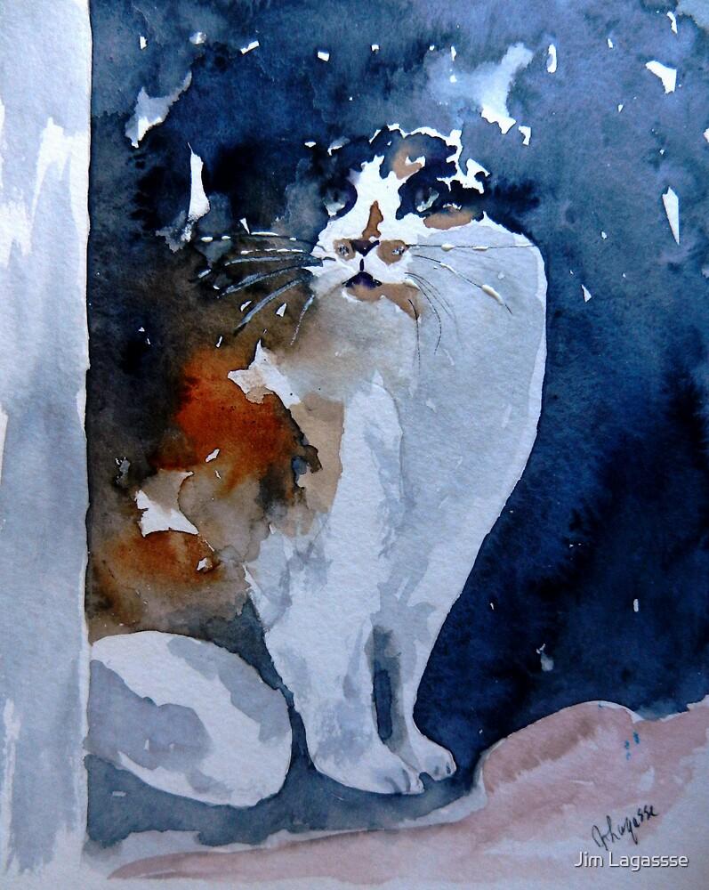 Window Cat by Jim Lagassse