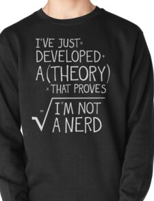 I've Just Developed A Theory That Proves I'm Not A Nerd Pullover