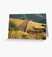 Monterey Hills 2 Greeting Card