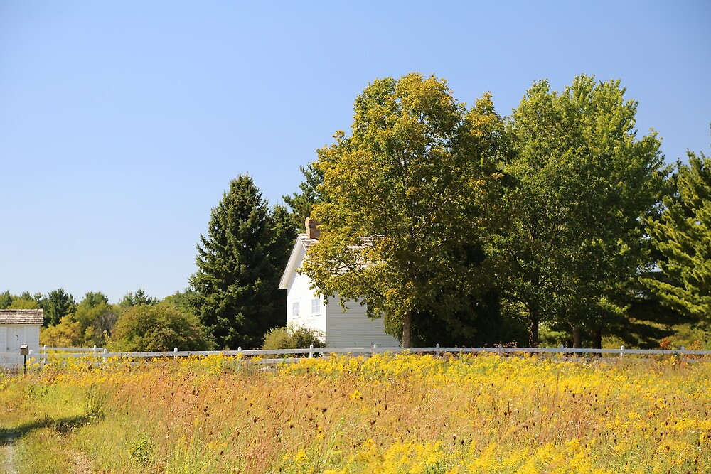 Little house on the prairie by brigant