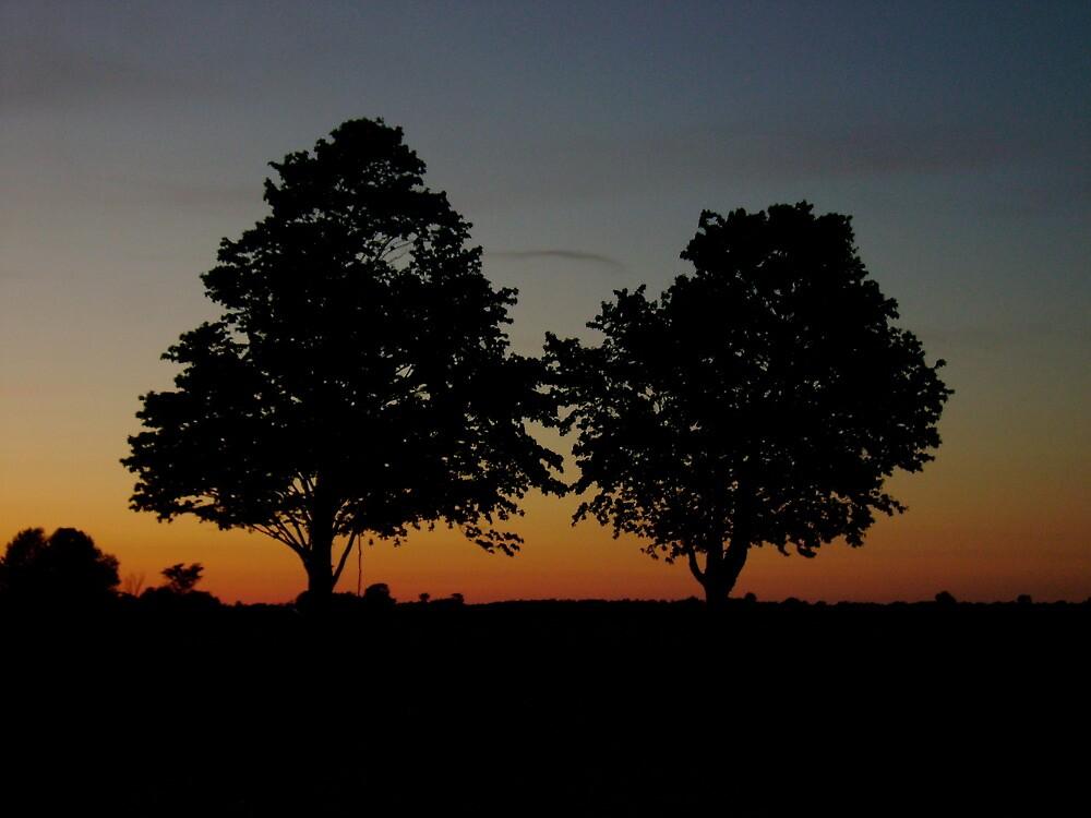 sunset ontario by john best