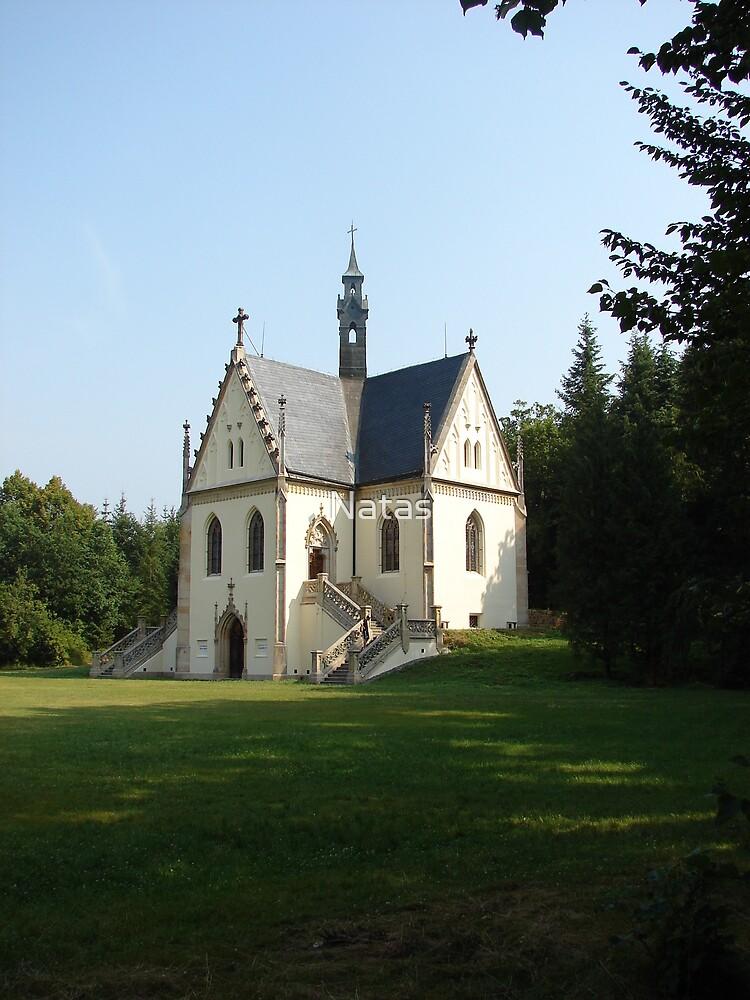 Tomb of Švancenberg by Natas