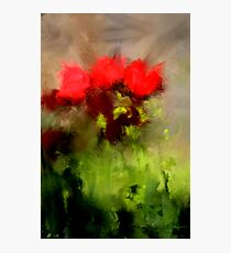 A handful of roses Photographic Print