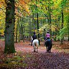 Autumn Ride  by Geoff Carpenter