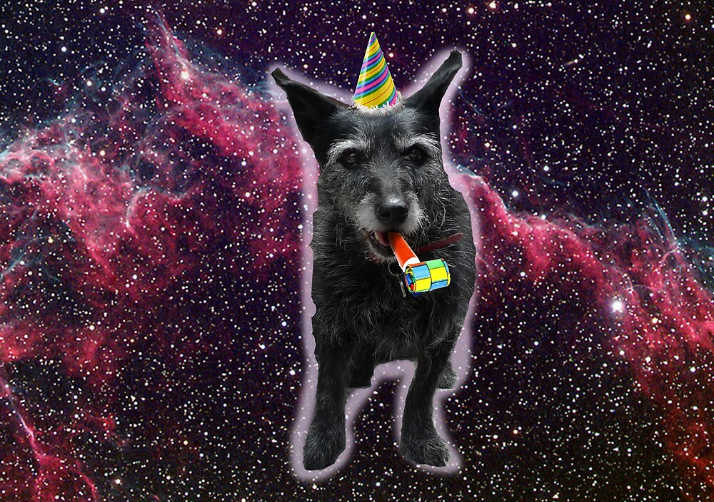 my dog in space by Tara Lea