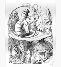 Cannabis and magic mushrooms in wonderland Poster
