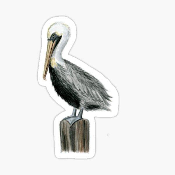 Pelican Sticker Sticker