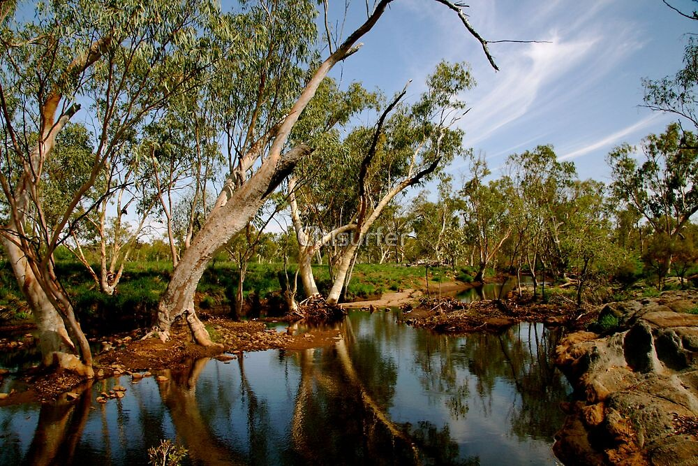 Rivers in the outback by Citisurfer