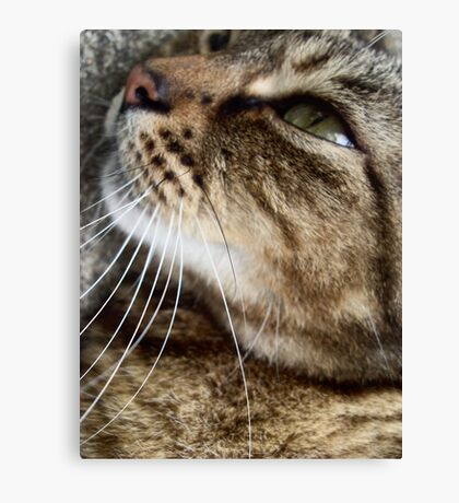 Charlie Anne Canvas Print