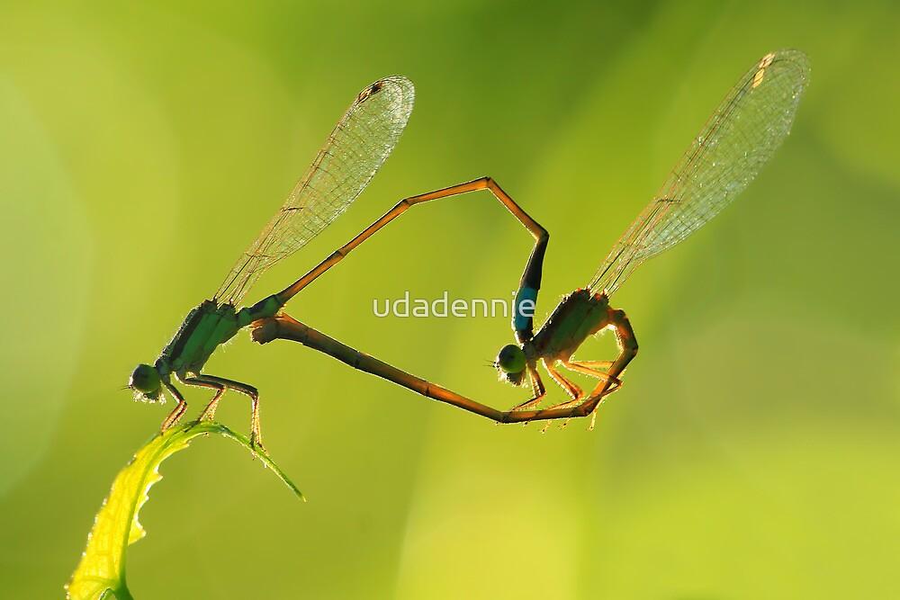 love...under the light by udadennie