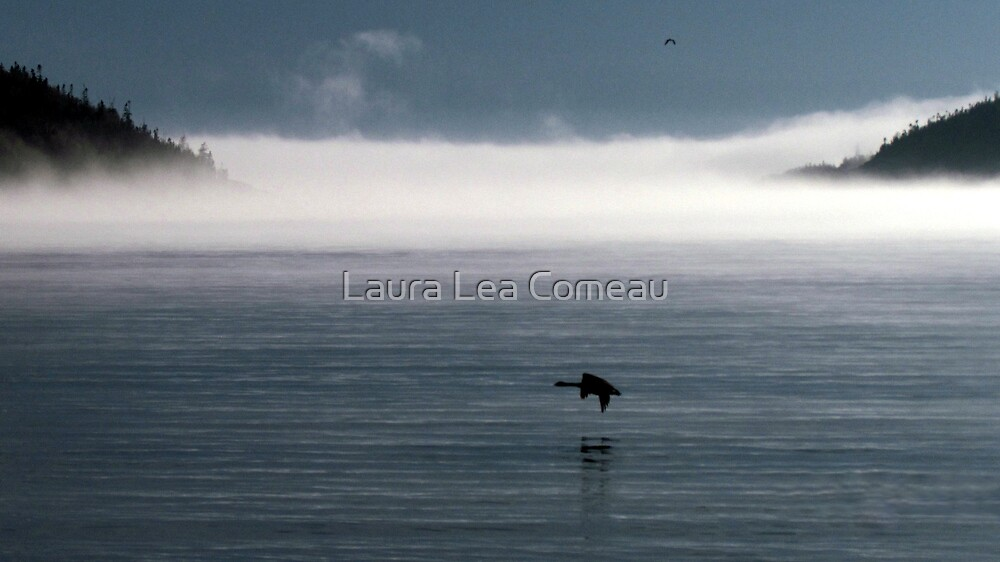 Last Run by Laura Lea Comeau