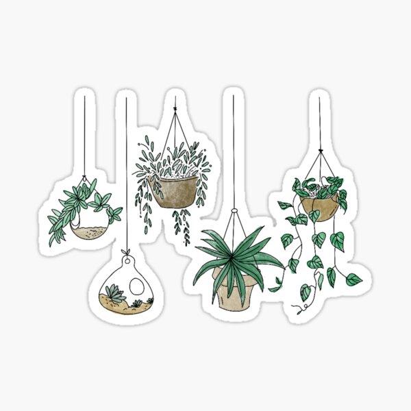 Hanging plants  Sticker