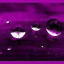 Purple rain by LisaDU