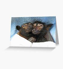 Errol und Luna - Spectacled Flying Fox Grußkarte
