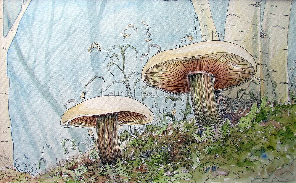 Mushrooms 2 by Laura Lea Comeau