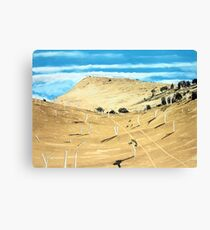 Southern Midlands Dry Canvas Print
