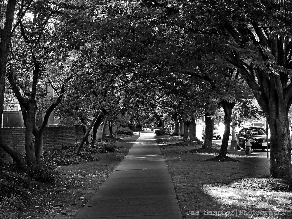 The Path by JasSanchez