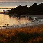 Sunset by PhotosByG