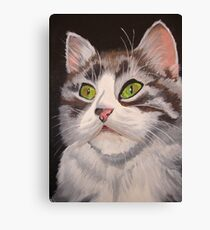 Long Haired Tabby Cat Portrait Canvas Print