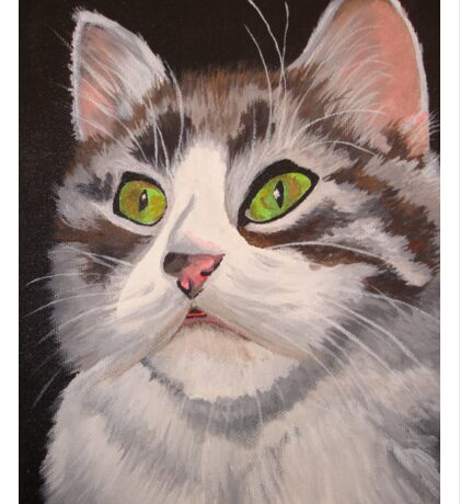 Long Haired Tabby Cat Portrait Sticker