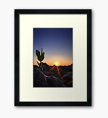 Because She Asked Framed Print