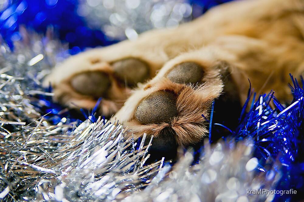 Wishing you a Pawsome Christmas by kraMPhotografie