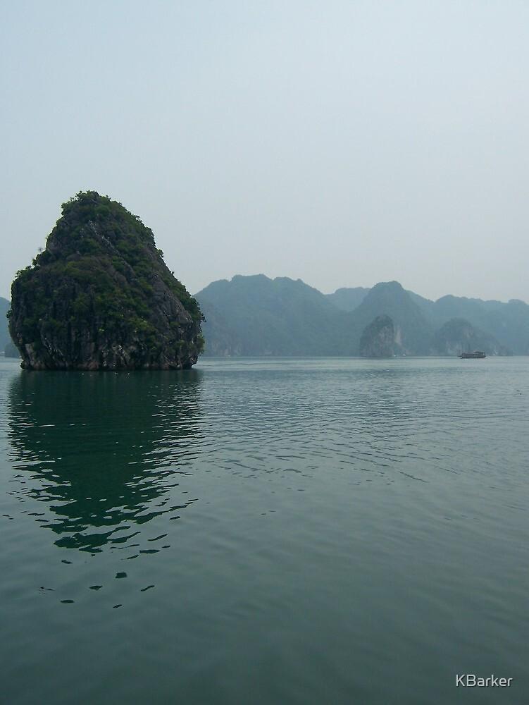 Vietnam, 2009 by KBarker