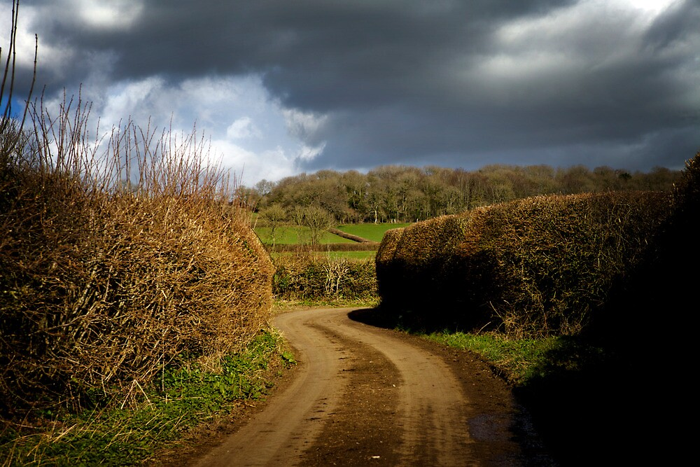 somerset by Philip Hatch-Barnwell
