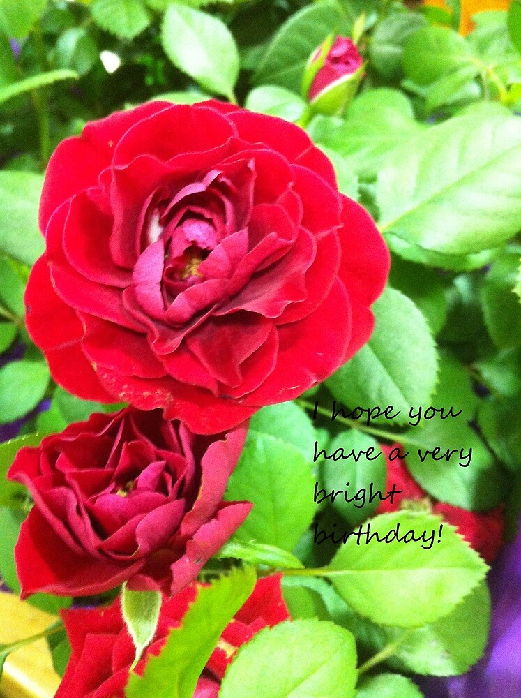 Red Blossum by Mdevaul