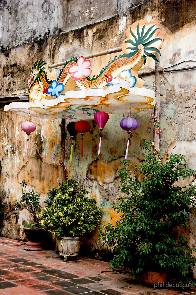 Vietnam Garden by phil decocco
