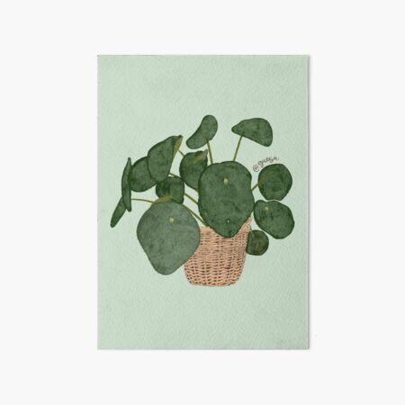 pilea Art Board Print