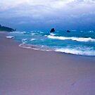 Warwick long bay,Bermuda by buddybetsy