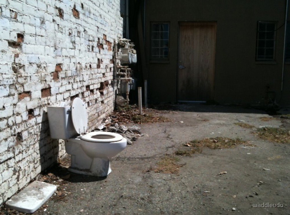 Outdoor Plumbing by waddleudo