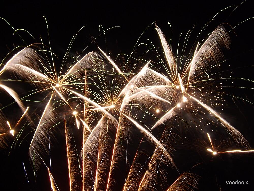 Fireworks by voodoo x