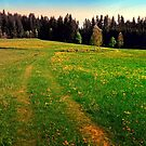 Outdoors in sunny spring by Patrick Jobst