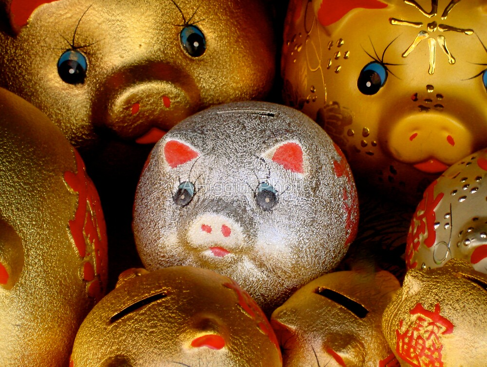 Lucky Piggy  by LoveAphoto