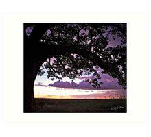 Wet Season Sunset, Derby Marsh. Art Print