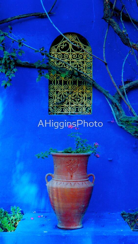 Majorelle Garden 3 by LoveAphoto
