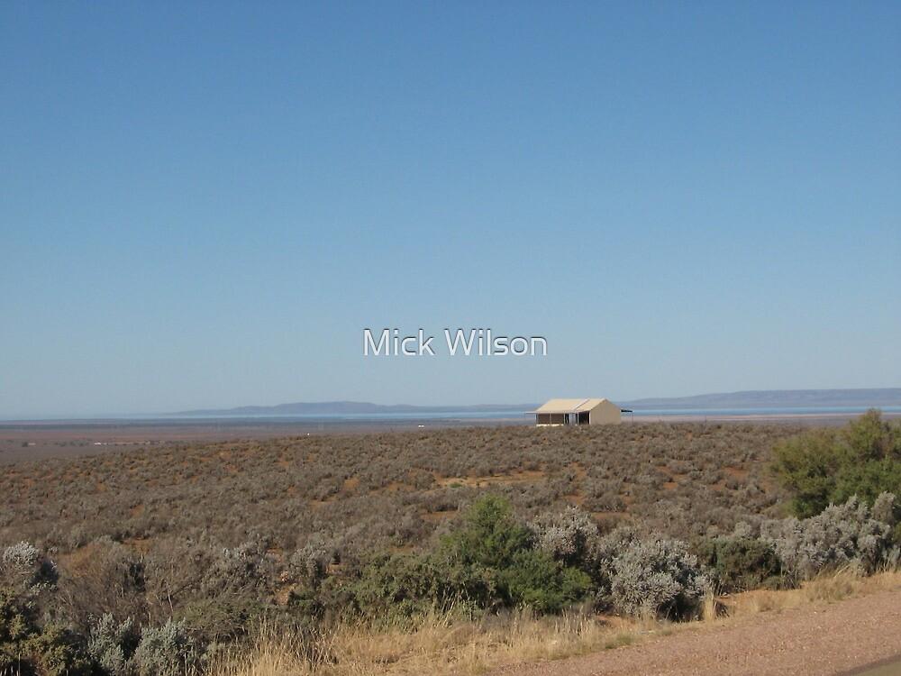 Flinders Ranges by Mick Wilson